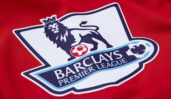 Premier League sleeve badge PRO S