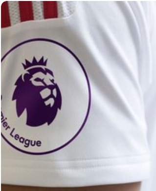 EPL badge new
