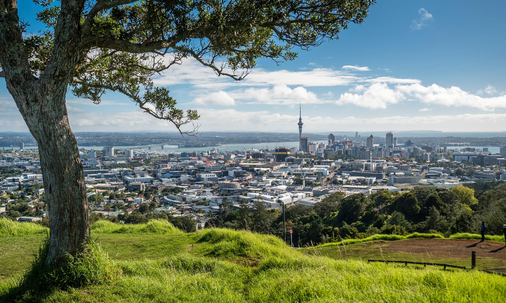 Auckland New Zealand north island